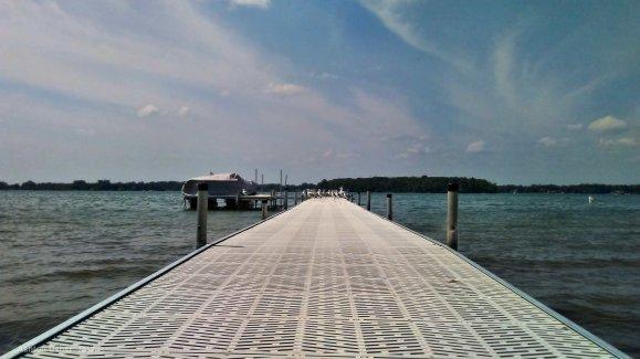 Birds on a pier