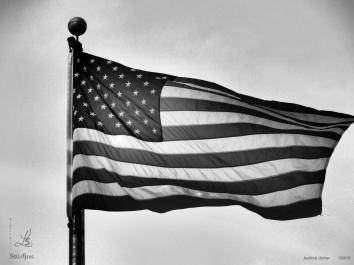 flag 3 bw