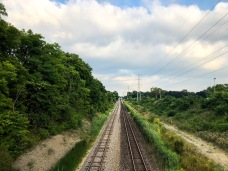 Trainspotting (1 of 19)